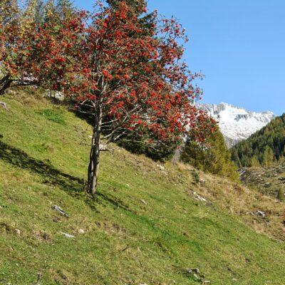 Valle Aurina in pieno ottobre